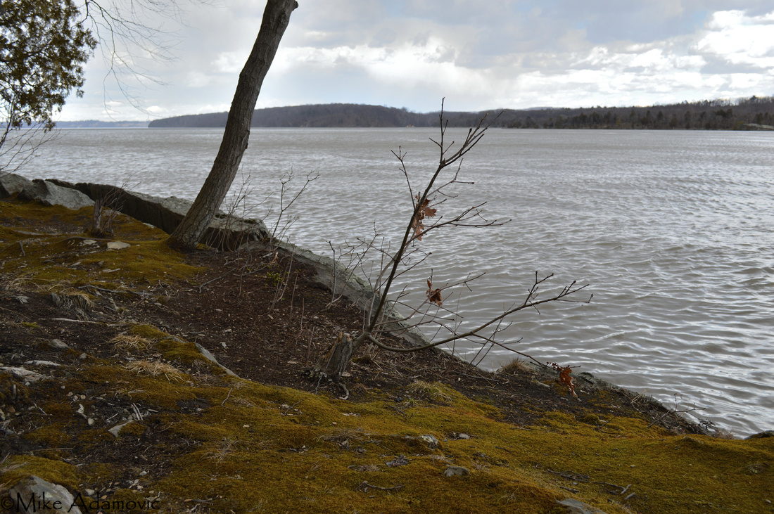 Early Spring along the Hudson