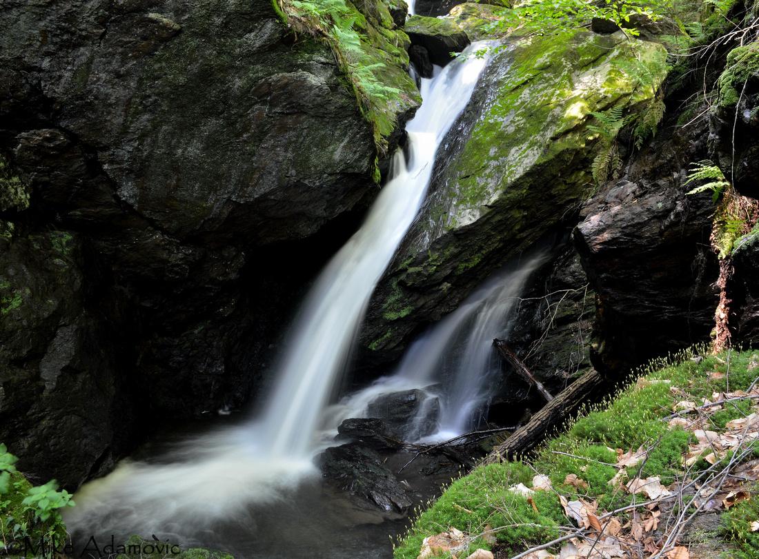 Fern Glen Falls